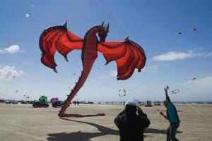 Huge Dragon Kites Talk Cock Sing Song