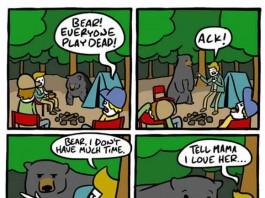 What to Do When a Bear Appear Talk Cock Sing Song
